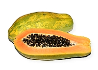 papaya_foto_by_juana_kressner