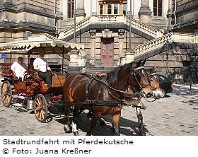 stadtrundfahrt_pferdekutsche